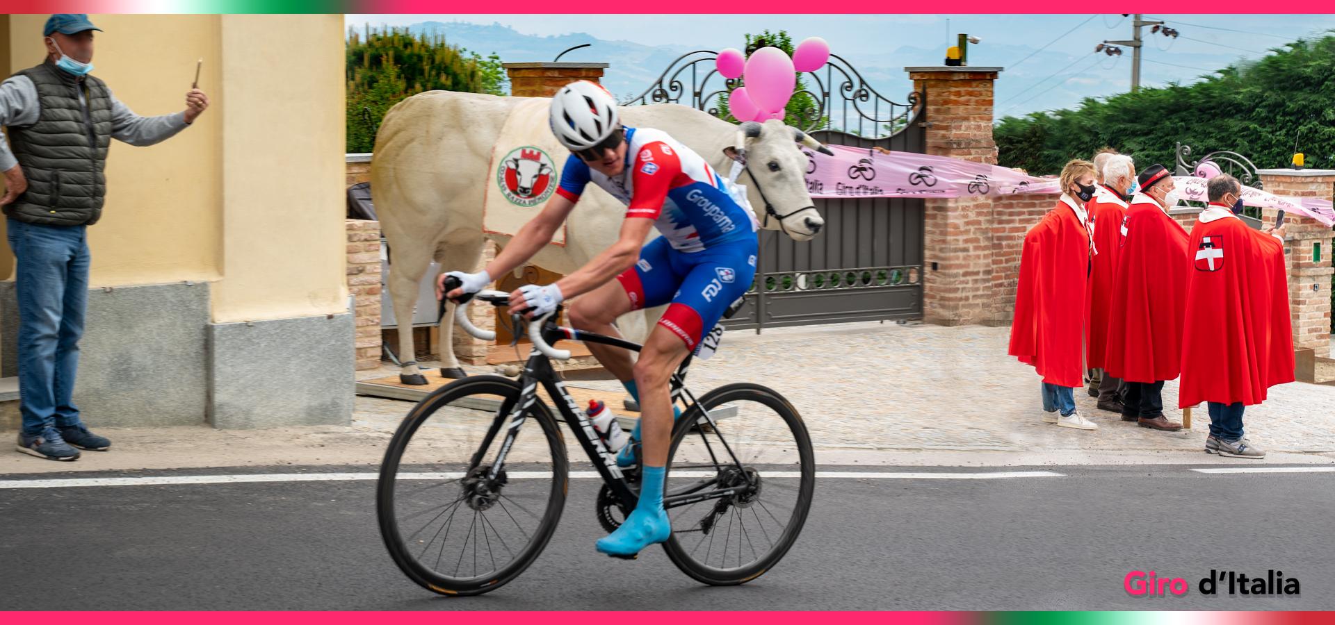 Il Giro d'Italia nelle terre del Fassone di Razza Piemontese